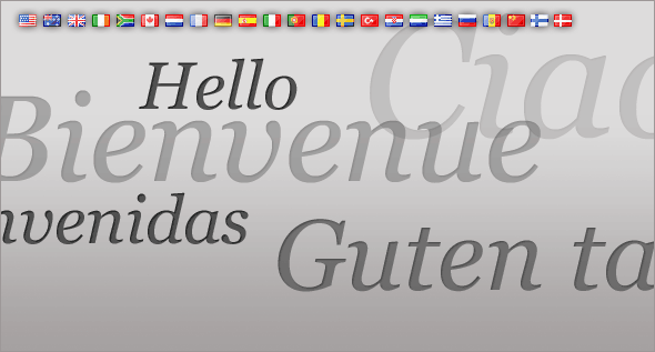 Provide online bookings and customer/supplier communications in a variety of different languages and currencies.